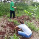 Sistema Agroflorestal Biodiverso