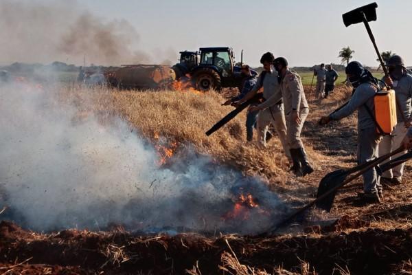 Equipe da Fazenda Experimental passa por treinamento de combate a incêndios florestais